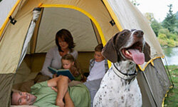 You have many factors to consider before you select a tent for your family camping trip.