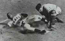 1951 Baseball Season