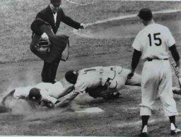 1954 Baseball Season
