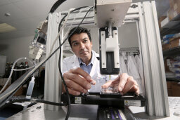 How 3-D Bioprinting Works