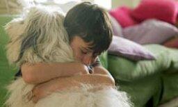 5 Alternatives to Pet Boarding