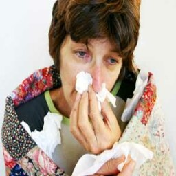 Allergies and Immune System