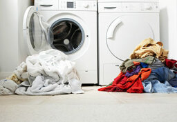5 Ways to Make My Home More Sustainable