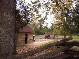 Family Vacations: Colonial Williamsburg