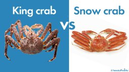 What's the Difference Between Snow Crab and King Crab?