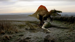 Spinosaurus Was a Lousy Swimmer, Study Says