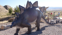 Stegosaurus: Body Like a Bus, Tiny Little Brain