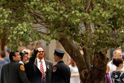 'Witness Trees' Testify to History, Embody Hope for Visitors