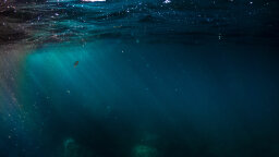 Thalassophobia: Do You Fear the Deep Ocean?