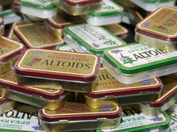 How to Make a Zen Garden from an Altoids Tin