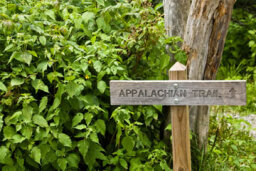 A Guide to Hiking the Appalachian Trail