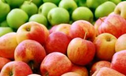 Apples to Apples: What Variety is Best for What?