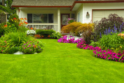 10 Everyday Backyard Hazards and How to Fix Them