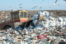 In what new ways can bacteria help shrink our landfills?