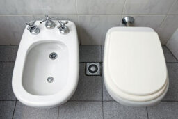 The Bidet: Is It Making a Comeback?