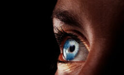 What Your Eyes Can Tell You About Your Cholesterol Levels