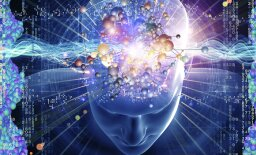 Is the Human Brain Still Evolving?