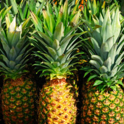 Bromelain: What You Need to Know