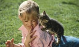10 Great Cat Breeds for Kids