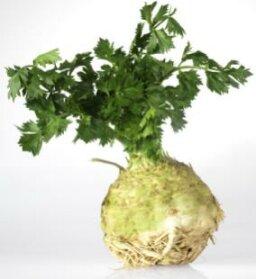 Celeriac