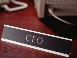 How CEOs Work