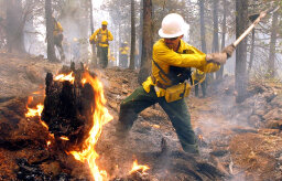 How Controlled Burns Work