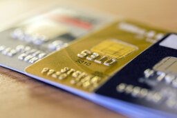 Can you get credit cards after being discharged from bankruptcy?