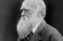 How Charles Darwin Worked