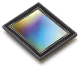 What is the difference between CCD and CMOS image sensors in a digital camera?