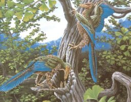 Archaepteryx