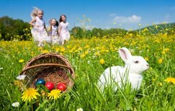 Top 5 Reasons We Celebrate Easter With a Bunny