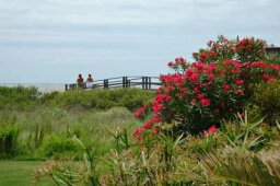 Family Vacations: Kiawah Island