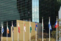 Family Vacations: United Nations