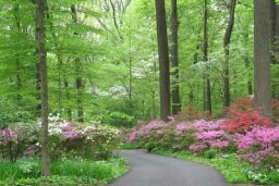 Family Vacations: Winterthur Gardens and Enchanted Woods