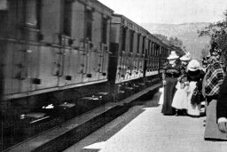 Did one of the first film audiences panic over footage of a train?