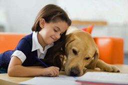 Is fostering dogs too hard on kids?