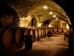 Utlimate Guide to French Wine