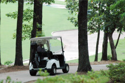 How Golf Carts Work