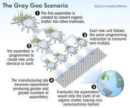 What is the gray goo nightmare?