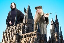Who Said It? 'Harry Potter' Quiz
