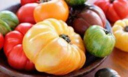 Heirloom Tomato Pictures
