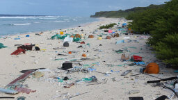 One of the World's Most Remote Uninhabited Islands Is Literally Covered in Our Trash
