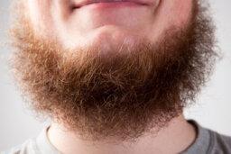 How often should I shave my beard?