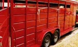 How to Transport Livestock