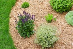 How Lawn Edging Works