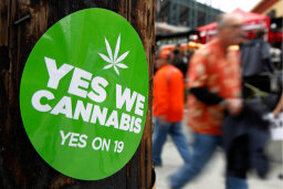 How Marijuana Works