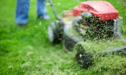 Which is greener, bagging your grass or leaving your clippings there?