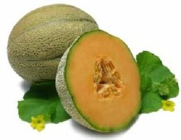 Melons: Natural Weight-Loss Food