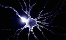 Nerve Pain Q & A