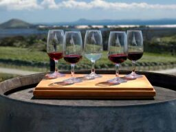 Ultimate Guide to New Zealand Wines